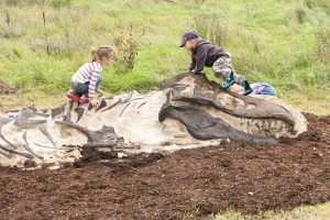 amazingly real dinosaur digs for playground | Henderson Recreation