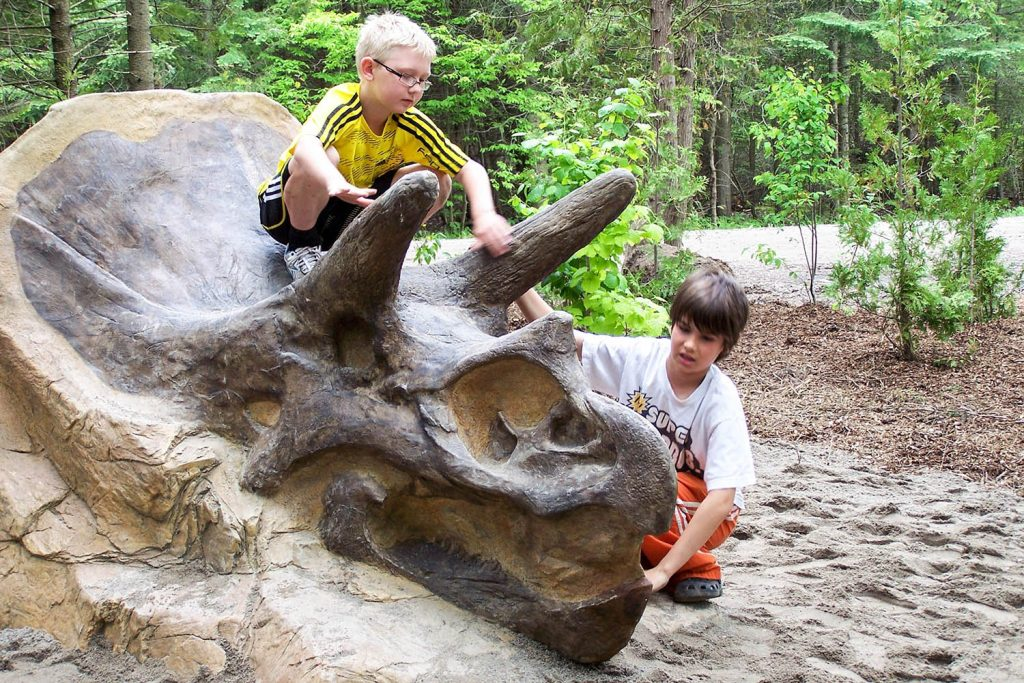 Triceratops Climber for Playground | | Henderson Recreation