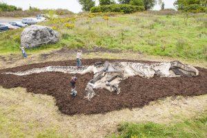 T-Rex Dinosaur Dig for Playground | Playground Fun for Children